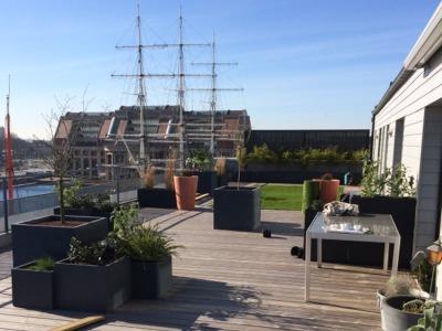 bocage_jardin_dunkerque_realisations_beton_terrasse